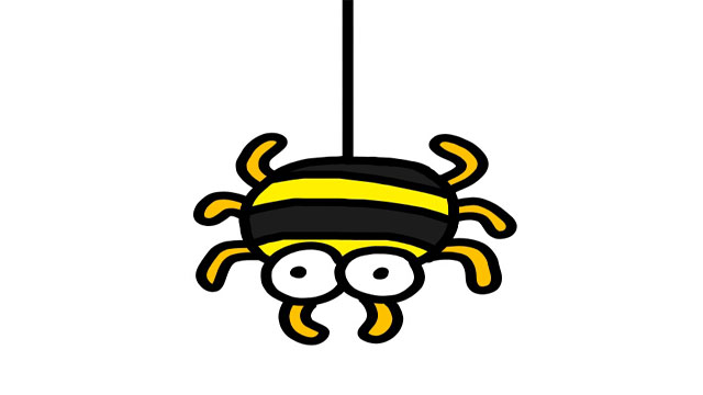 クモの画像