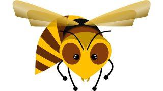 スズメバチの画像